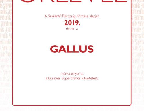 A Gallus hetedszer érdemelte ki a Business Superbrands díjat