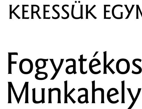 Fogyatékosság-barát Munkahely 2018